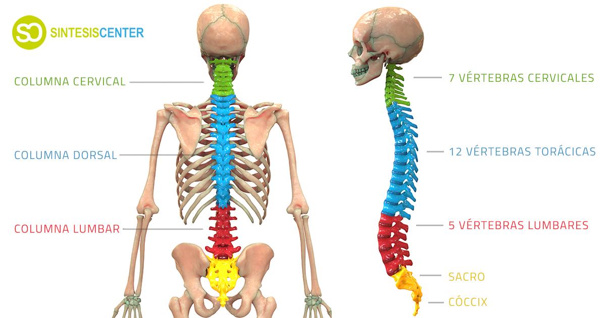 Puedes ir al Dolor de rodilla al flexionar echar un vistazo a